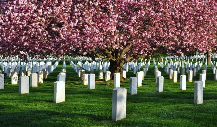 set-a-headstone